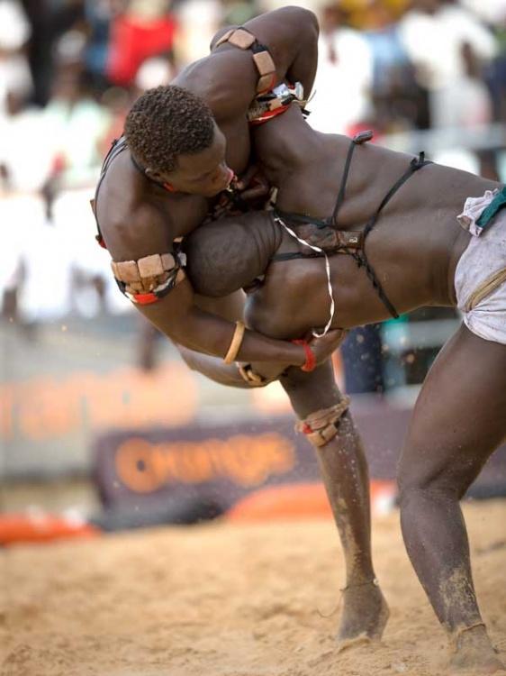 lutte-senegalaise-sport-senega